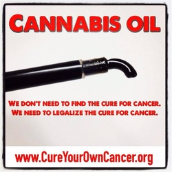 Cannabis Oil Testimonials  Hear from people who have cured
